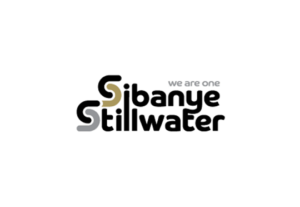 Read more about the article Sibanye-Stillwater: Artisan Fitting